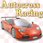 Autocross Racing igra