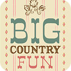 Big Country Fun igra