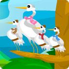 Birds Of A Feather igra