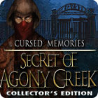 Cursed Memories: The Secret of Agony Creek Collector's Edition igra