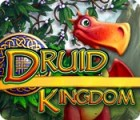 Druid Kingdom igra