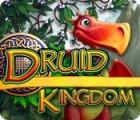 Druid Kingdom igra