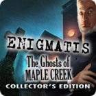 Enigmatis: The Ghosts of Maple Creek Collector's Edition igra