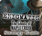 Enigmatis: The Ghosts of Maple Creek Strategy Guide igra