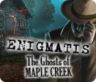 Enigmatis: The Ghosts of Maple Creek igra