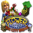 Flower Shop: Big City Break igra