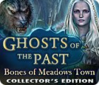 Ghosts of the Past: Bones of Meadows Town Collector's Edition igra