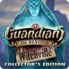 Guardians of Beyond: Witchville Collector's Edition igra