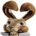 Hop: Easter Bunny Coloring igra