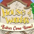 House of Wonders: Babies Come Home igra