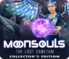 Moonsouls: The Lost Sanctum Collector's Edition igra