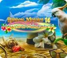 Rainbow Mosaics 14: Hawaiian Vacation igra