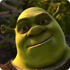 Shrek Shreds igra