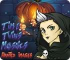 Time Twins Mosaics Haunted Images igra